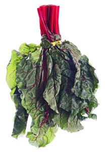 Organic Red Swiss Chard