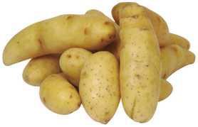 Fingerling Gold Premium Potatoes