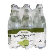 Nature's Place Lime Sparkling Spring Water