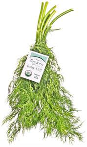 Nature's Place Organic Bunch Baby Dill