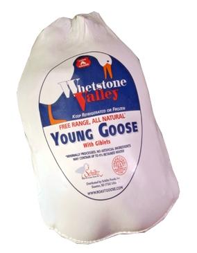 Evi's Young Geese