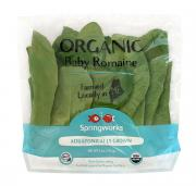 Springworks Farm Organic Baby Romaine Lettuce