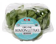 Springworks Farm Organic Bibb Lettuce