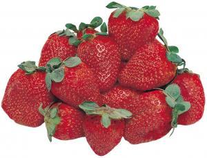 Native Strawberries