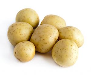 Irving Acres Baby Maine Golden Potatoes
