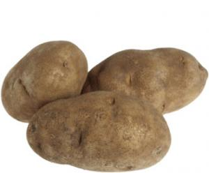 Irving Acres Baby Maine Russet Potatoes