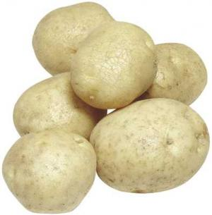 Organic Gold New Potatoes