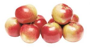 Organic McIntosh Apples