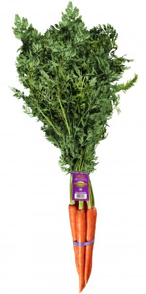 Cal-Organic Farms Organic Rainbow Bunch Carrots