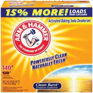 Arm & Hammer Clean Burst Powder Laundry Detergent