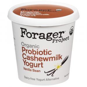 Forager Organic Cashewmilk Vanilla Bean Yogurt