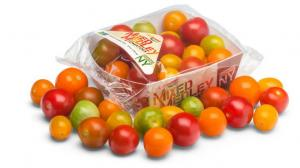 Intergrow Greenhouses Mixed Medley Tomatoes