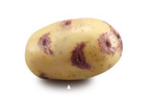 Earth Fresh Blue Belle Potatoes