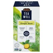 Tea Well Organic Ginger Mint Herbal Supplement Tea Bags