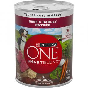 Purina ONE Beef & Barley in Gravy