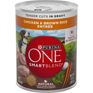Purina ONE Chicken & Rice in Gravy