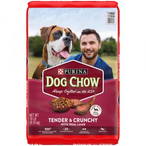 Purina Dog Chow Healthy Morsels Adult Dry Dog Food
