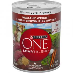 Purina ONE Lamb & Rice in Gravy