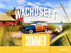 Wachusett Summer American Wheat Ale with a Hint of Lemon