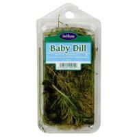 HerbThyme Baby Dill