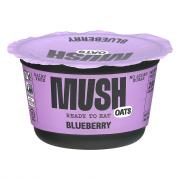 Mush Overnight Oats Dairy Free Blueberry Yogurt