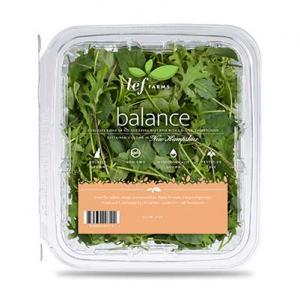 Lef Farms Balance Baby Kale Blend