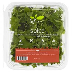 Lef Farms Spice Lettuce Blend