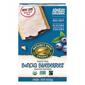 Nature's Path Organic Frosted Blueberries Toaster Pastries