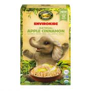 Nature's Path Organic Gluten Free Apple Cinnamon Oatmeal