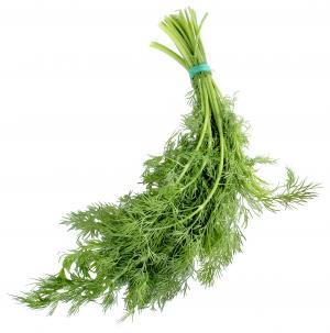 Lucinda's Organic Dill Bunch