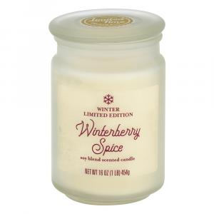 Limited Time Originals Winterberry Spice Soy Blend Candle