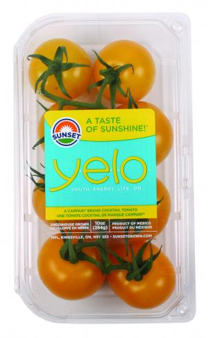 Yelo Cocktail Tomatoes