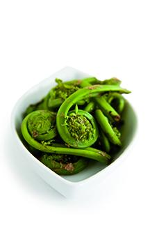 Fiddleheads - Must Cook Prior To Consumption