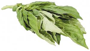 Bunched Basil