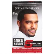 Dark & Natural #31 Jet Black Men's Hair Color