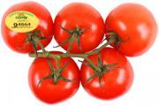 Organic Locally Grown Tomatoes