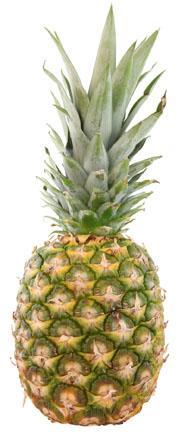 Organic Golden Pineapples