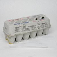 Shadow Jumbo Brown Eggs