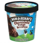 Ben & Jerry's Fudge Brownie Ice Cream