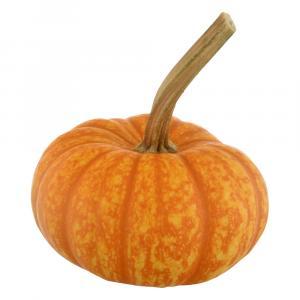 Orange Sparkler Pumpkins