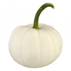 White Casper Pumpkins